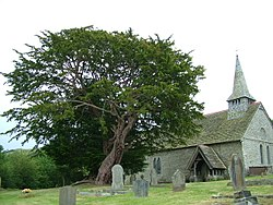 Discoed church and ancient yew - geograph-2444805.jpg