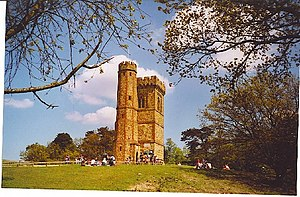 Leith Hill Tower - geograph.org.uk - 104994.jpg