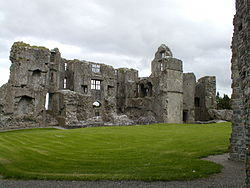 Roscommon Castle.JPG