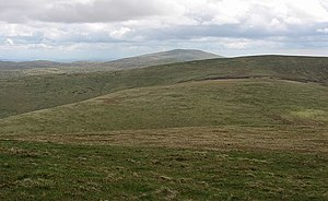 Southeast slopes of Ballencleuch Law - geograph.org.uk - 913473.jpg
