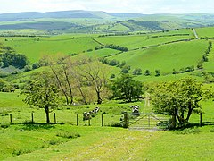 Glorious Radnor - geograph.org.uk - 1325948.jpg