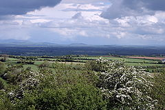 Ireland - Plains of South Kildare.jpg