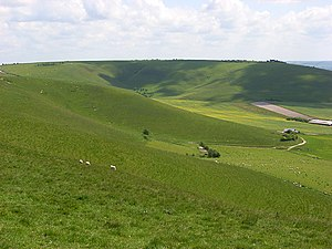 Downland, All Cannings - geograph.org.uk - 844985.jpg