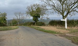 Road through open countryside with hedgerows and mature trees