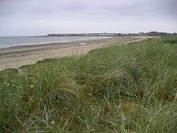 Troon and its beach - geograph.org.uk - 28715.jpg