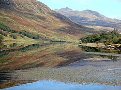 Autumn tints on Loch Iubhair - geograph.org.uk - 1493999.jpg