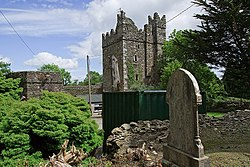 Walshestown Castle Geograph-3036259-by-Mike-Searle.jpg