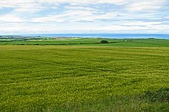 Grain fields with Banff Bay beyond - geograph.org.uk - 918541.jpg